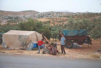 أسرة فرت من الأعمال العدائية في إدلب تقيم مخيما مؤقتا في قرية عقربات قرب الحدود التركية (3 حزيران/يونيو 2019)