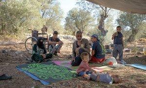 许多难民家庭的避难所在希腊莱斯沃斯岛的莫里亚营地发生火灾后被烧毁。