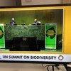 Le Président de l'Assemblée générale des Nations Unies, Volkan Bozkir, et le Secrétaire général de l'ONU, António Guterres, au sommet sur la biodiversité.