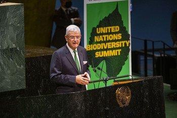 यूएन महासभा अध्यक्ष (पीजीए) वोल्कान बोज़किर जैव विविधता पर यूएन सम्मेलन को सम्बोधित करते हुए.