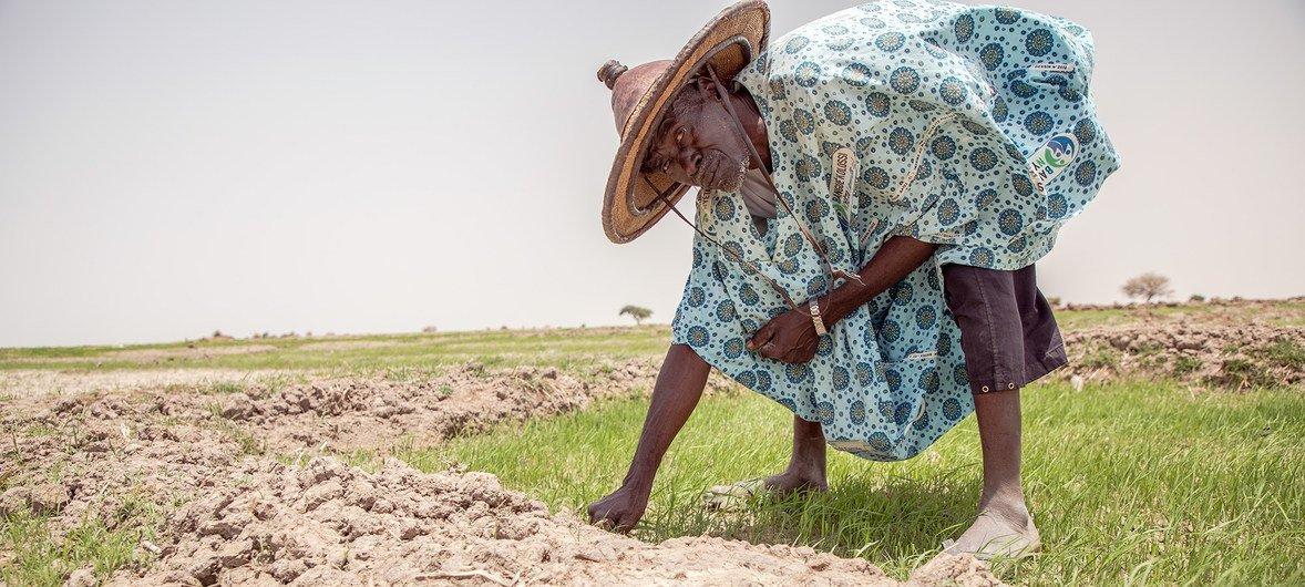 Las repetidas sequías e inundaciones han dificultado la vida de los agricultores en Mali.