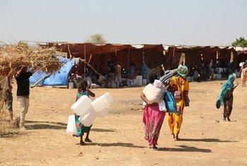 Refugiados recém-chegados de Tigray, na Etiópia, trazem suprimentos para abrigo no campo de Raquba, em Kassala, no Sudão