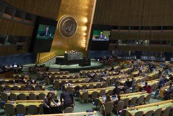 联大第74届会议第33次全体会议就关于安全理事会席位公平分配和成员数目增加问题举行年度辩论