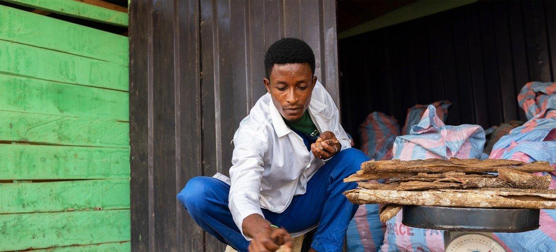 Le recours à une médecine traditionnelle de qualité peut faciliter la fourniture de soins de santé, en particulier dans les zones rurales éloignées où les systèmes de soins de santé conventionnels sont limités. La médecine traditionnelle de qualité peut bénéficier à une grande partie de la population car elle est la principale, voire la seule, source de soins de santé pour environ 80 % des personnes en Afrique.