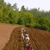 Wakulima katika jimbo la Andhra Pradesh nchini India wanakumbatia mifumo mipya ya kilimo.