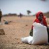 55 देशों में 13 करोड़ से ज़्यादा लोग खाद्य असुरक्षा के हालात में जाने को मजबूर हैं.
