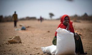 In 2019, Ethiopia experienced the fifth-worst food crisis of all the countries on earth.