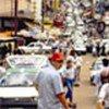 关注道路安全问题  世界卫生组织图片
