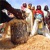 Des femmes attendent de recevoir du grain fourni par le PAM