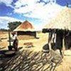 Fermier en Zambie