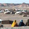 西撒哈拉难民