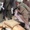 Distribution de semences aux fermiers afghans
