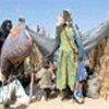 Réfugiés dans l'est du Tchad, à Djoran