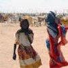 Réfugiés soudanais à la frontière tchadienne
