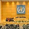 58th World Health Assembly