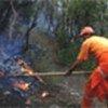 Forest fire in the Mediterranean region