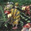 劳动中的刚果妇女