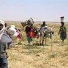 Un groupe de réfugiés soudanais arrive au Tchad après avoir échappé à des attaques au Darfour (février 2008).
