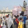Food aid being distributed at UNRWA's food centre, Beach Camp, Gaza Strip
