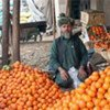 Afghan refugee in Jalozai (Pakistan)
