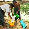 Villagers use bleaching powder to purify contaminated pond water in Kawhmu Township