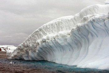 Collins Glacier, King Geroge Island, Antarctica