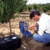 Un scientifique mesure l'humidité du sol (juillet 2008). Photo : FAO