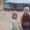 Niños indígenas en los Andes peruanos. Foto: FAO