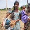 Displaced Sri Lankan families collect emergency shelter materials