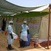 Une tente de l'UNICEF pour le traitement du choléra.