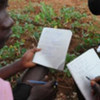 School children compare notes about their vegetable garden's ecology