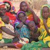 Fighting in North Darfur has displaced hundreds of households (file photo)