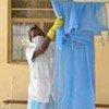 Moustiquaires contre le paludisme