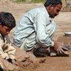 Des centaines de familles avec de jeunes enfants travaillent et vivent dans des briquetteries près d'Islamabad.