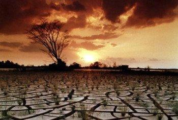 La désertification est provoquée par les changements climatiques et l'impact des actions humaines.