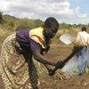 La population active en Afrique travaille principalement dans le secteur agricole.