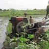 Un agriculteur en Afrique sub-saharienne.