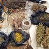 Many developing countries use traditional medicine to help meet some of their primary health care needs