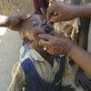 Un enfant est immunisé contre la polio.