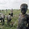 Après un largage de nourriture par le Programme alimentaire mondial, des villageois ramassent des grains dispersés sur le sol.