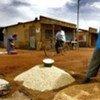 Un homme au Mali vend des céréales.