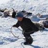 Un garçon ramasse la carcasse d'un mouton mort de froid en Mongolie.