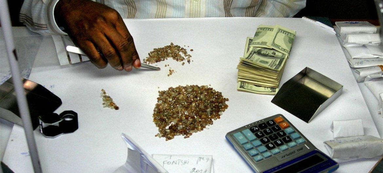Dealer sorting rough diamonds.