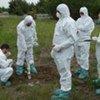 Une équipe de terrain prenant part à un exercice de l'AIEA sur un accident nucléaire.