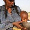 De nombreuses personnes ont été affectées par des inondations au Niger.