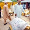 Distributing seeds to vulnerable farming families hit by the floods in Pakistan