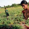 The vulnerability of farming communities to climate-related disasters needs to be reduced.