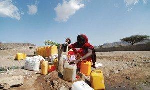 La sécheresse à Djibouti.