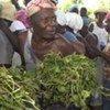 Le choléra riste d'accroître les problèmes de sécurité alimentaire en Haïti.