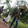 Refugees from Côte d'Ivoire walk along a forest trail to find safety and shelter in eastern Liberia